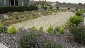 likvidace dešťové vody