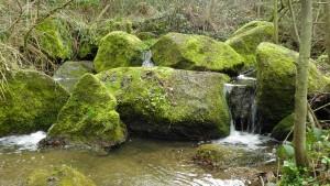 Škvorecký potok