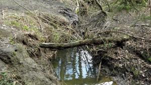 Dobročovický potok