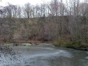 nad Horním Úvalským rybníkem